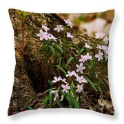Wild Spring Beauty Throw Pillow