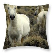 Wild Stallion Throw Pillow