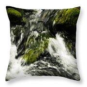 Wild Stream Of Green Moss Throw Pillow