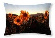 Wild Sunflowers Of Buena Vista Throw Pillow