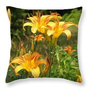 Wild Tiger Lilies Throw Pillow