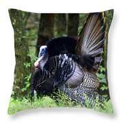 Wild Turkey 1 Throw Pillow