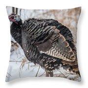 Wild Turkey Not The Whiskey Throw Pillow