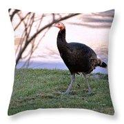Wild Turkey. Throw Pillow