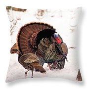 Wild Turkey Parade Print Throw Pillow