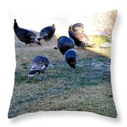 Wild Turkeys. Throw Pillow
