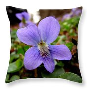 Wild Violet 1 Throw Pillow