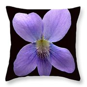 Wild Violet On Black Throw Pillow