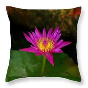 Wild Water Lily Throw Pillow