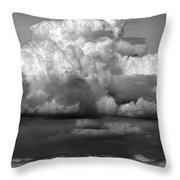 Wild Weather Throw Pillow