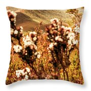 Wild West Mountain View Throw Pillow