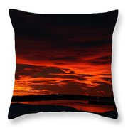 Wild Winter Sunset Throw Pillow