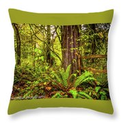 Wild Wonder In The Woods Throw Pillow