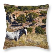 Wild Wyoming Throw Pillow