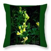 Wild Yellow Flowers On Black Background Throw Pillow