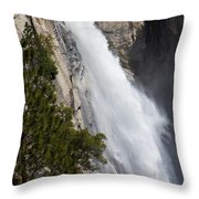 Wildcat Falls  Throw Pillow
