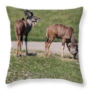Wildebeest II Throw Pillow
