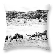 Wildebeest On The Move Throw Pillow