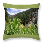 Wilderness Expedition Throw Pillow