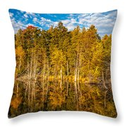 Wilderness Pond 3 Throw Pillow