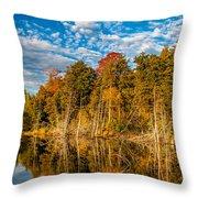 Wilderness Pond  Throw Pillow