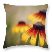 Wildfire Wildflowers  Throw Pillow