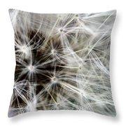 Wildflower 1 Throw Pillow
