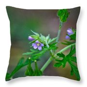 Wildflower 1 Throw Pillow