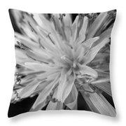 Wildflower 5 Black N White Throw Pillow