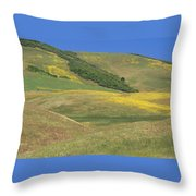 Wildflower Display - Salisbury Potrero Throw Pillow