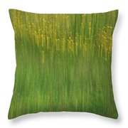 Wildflower Fields Abstract Throw Pillow