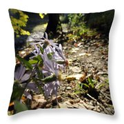 Wildflower Looker Throw Pillow