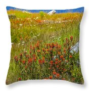 Wildflower Meadow With Indian Paintbrush Throw Pillow