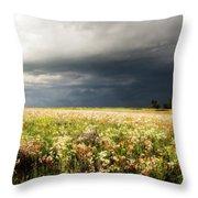 Wildflower Panorama 2008 Throw Pillow