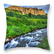 Wildflower River Throw Pillow