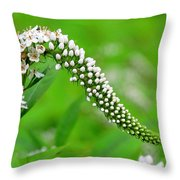 Wildflower Slide Throw Pillow