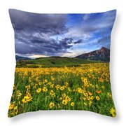 Wildflower Storm Throw Pillow