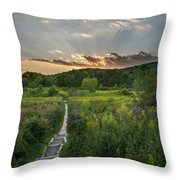 Wildflower Sunset 2016 Square Throw Pillow