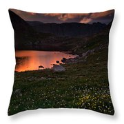 Wildflower Sunset At Summit Lake Throw Pillow