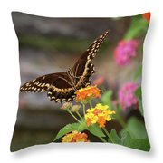 Wildflower Swallowtail Throw Pillow