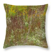 Wildflower Tapestry In Jefferson County Throw Pillow