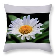 Wildflower  V9 Throw Pillow