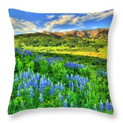 Wildflower Wonder Throw Pillow