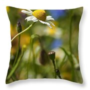 Wildflowers 1 Throw Pillow