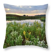Wildflowers Adorn Nippersink Creek In Glacial Park Throw Pillow