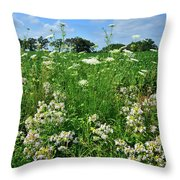 Wildflowers Along Country Road In Mchenry County Throw Pillow