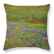 Wildflowers Along The Creek Throw Pillow