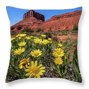 Wildflowers And Butte Throw Pillow