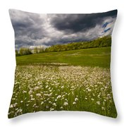 Wildflowers And Storm Clouds Throw Pillow