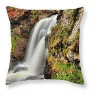Wildflowers At Moose Falls Throw Pillow